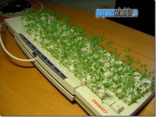 3-Cum-se-curata-tastatura