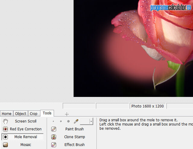 Photoscape » Editor » Tools
