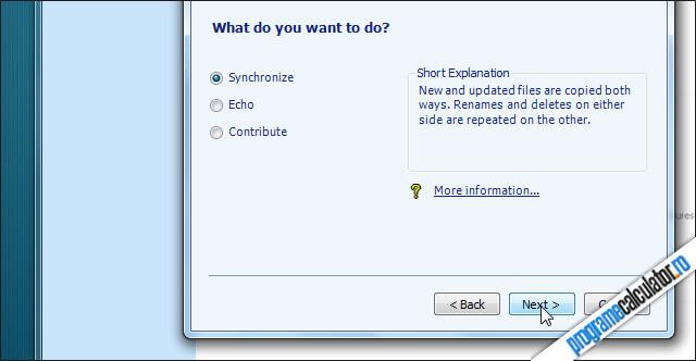 Syncronize  pentru a sincroniza cele doua foldere