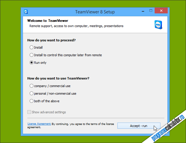 TeamViewer: Run only » Accept - run