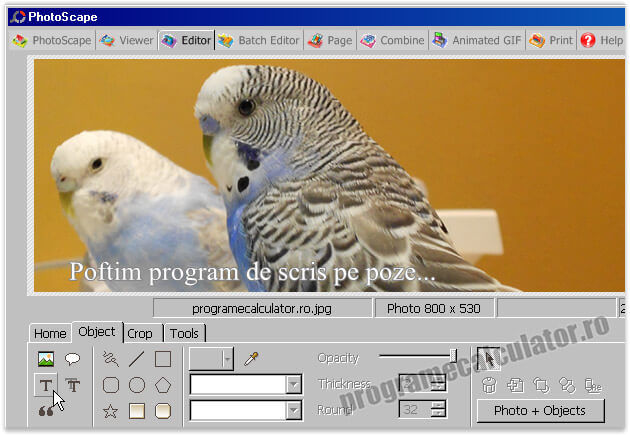 program de scris pe poze