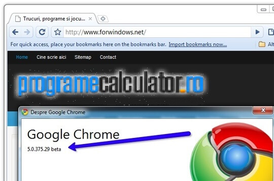 1-Google-Chrome-5-beta