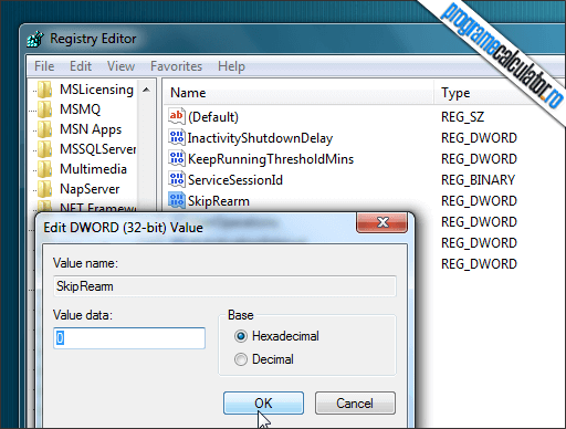 skip rearm windows registry