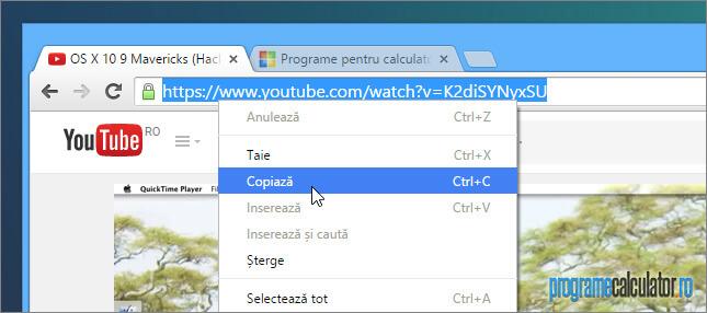 copierea adresei URL a videoclipului de pe YouTube
