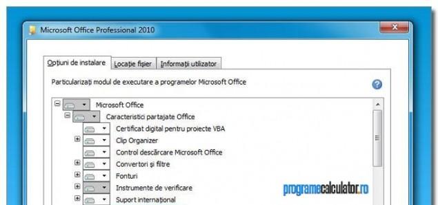 3-Instalare-personalizata-Microsoft-Office-Professional-2010