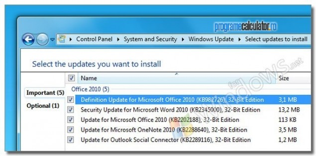 4-Actualizari-Windows-Update-pentru-Microsoft-Office-Professional-2010