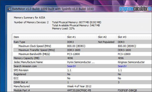 RAMMon: informatii memorie RAM