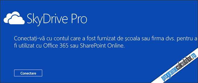 SkyDrive Pro pentru Windows 8