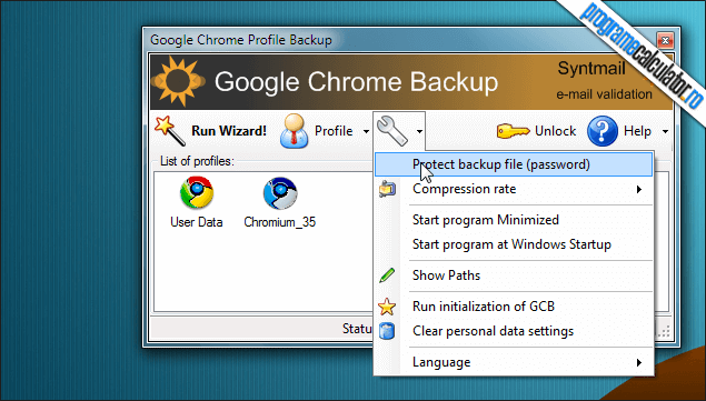 1-Google Chrome Backup-interfata