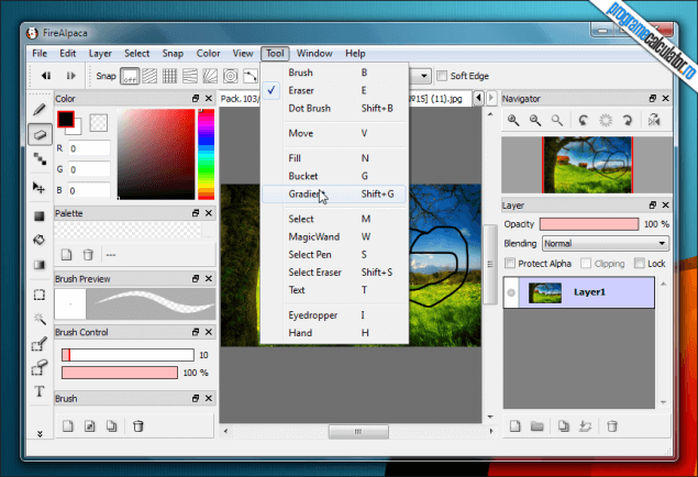 2-FireAlpaca-instrumente-editare-imagini