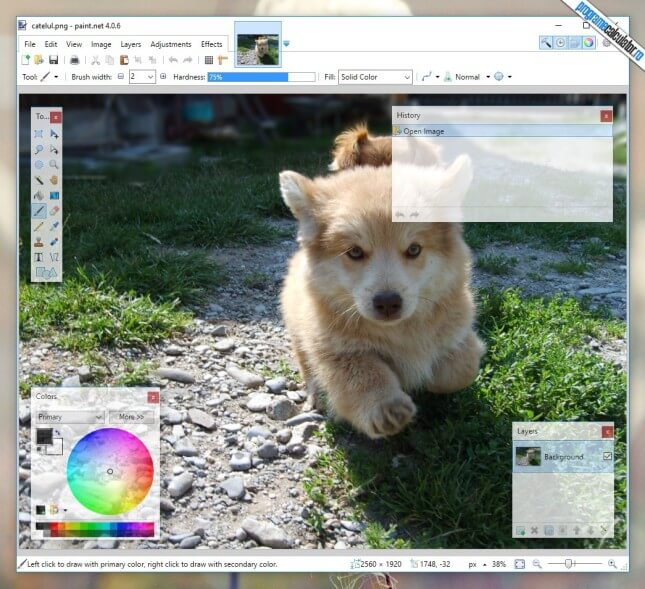 program de modificat poze gratis pentru PC - Paint.NET
