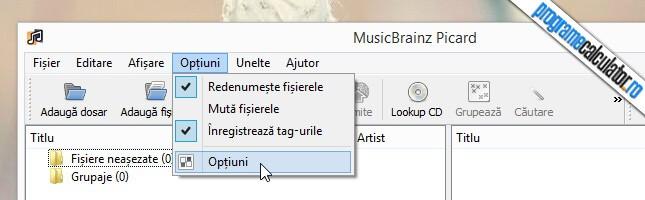 panou de configurare MusicBrainz Picard