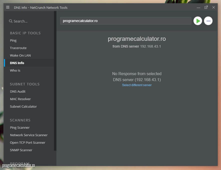 NetCrunch - DNS Info